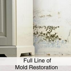 Full-Line-of-Mold-Restoration